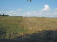 Gn-189 Działka rolna