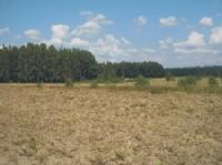 Gn-164 działka rolna