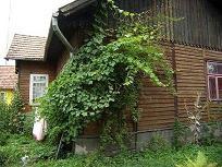 Dom na 11 a działce