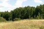 Działka 14,6 ha na Mazurach Garb