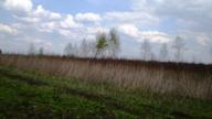 Do sprzedania 14 ha ziemi rolnej