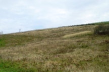 Działka rolna 0,49 ha