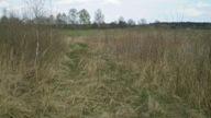 Do sprzedania 42 ha ziemi rolnej