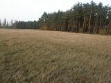 działka 60 km od Warszawy