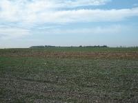 Działki 25 ha, 46 ha, 30 ha