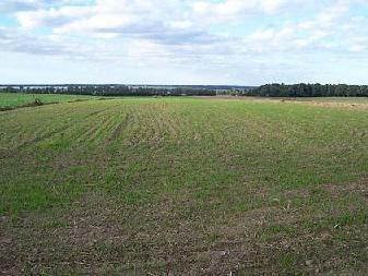Działka rolna Kopnica
