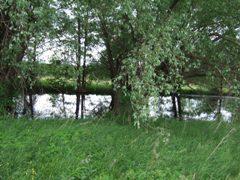 Działka 1,8 ha k.Wałbrzycha