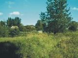Gn-143 Działki w pobliżu lasu